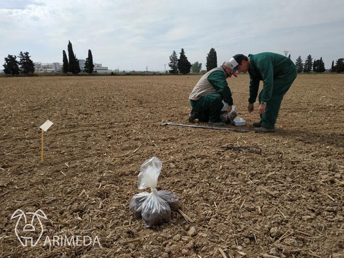 life-arimeda-tamarite-la-melusa-pivot-19-04-15