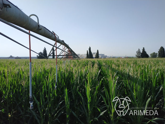 life-arimeda-tamarite-la-melusa-pivot-19-07-22-bis
