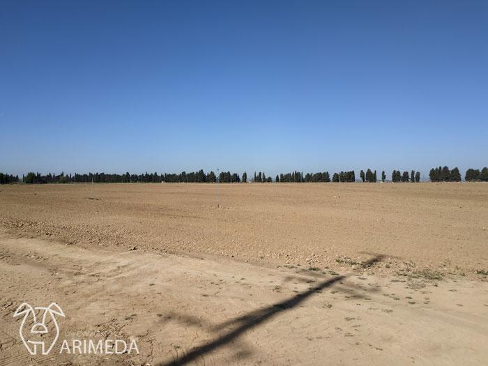 life-arimeda-tamarite-la-melusa-referencia-19-03-27